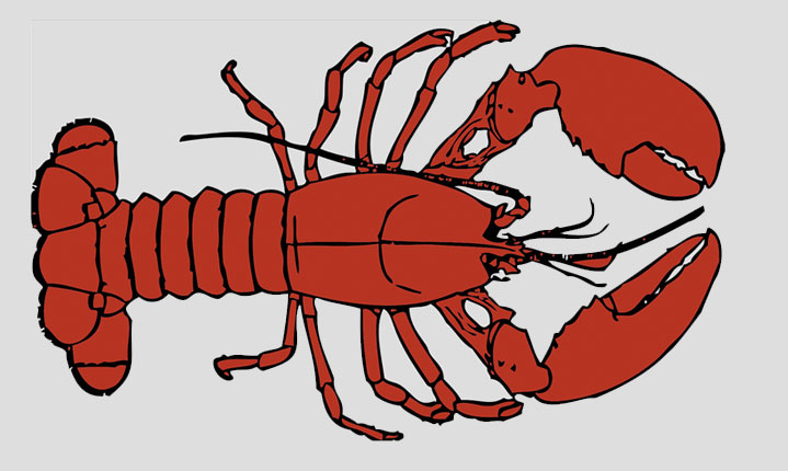 3rd-Annual-West-Chester-Craft-Beer-&-Lobster-Fest-is-Coming-Up